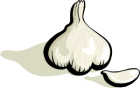 johnny_automatic_garlic_1