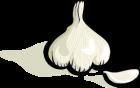 johnny_automatic_garlic_1